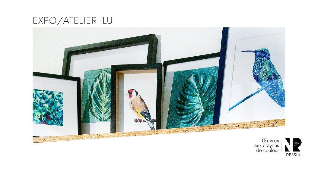 Exposition dessins originales tableaux aux crayons de couleur atelier ilu