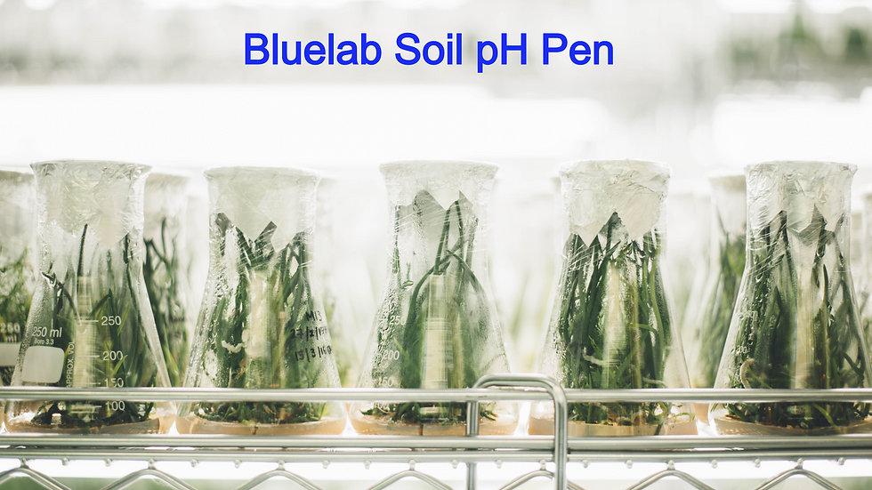 Bluelab Soil pH Pen