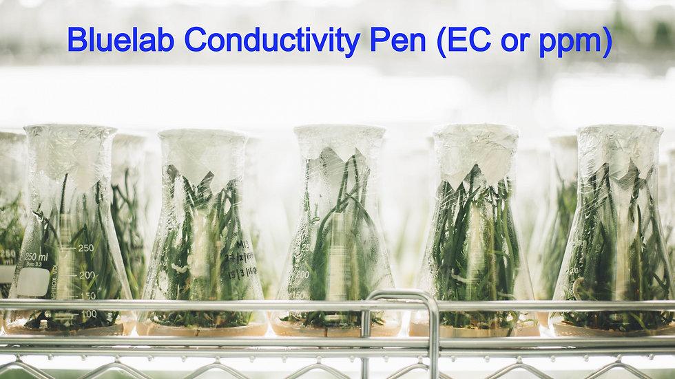 Bluelab Conductivity Pen (EC or ppm)
