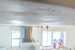 天井を塗ることで保温性もアップ