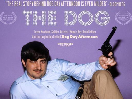 Episode 51: The Dog