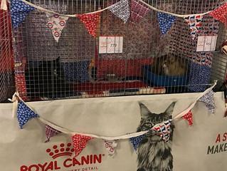 FIFe World Cat Show