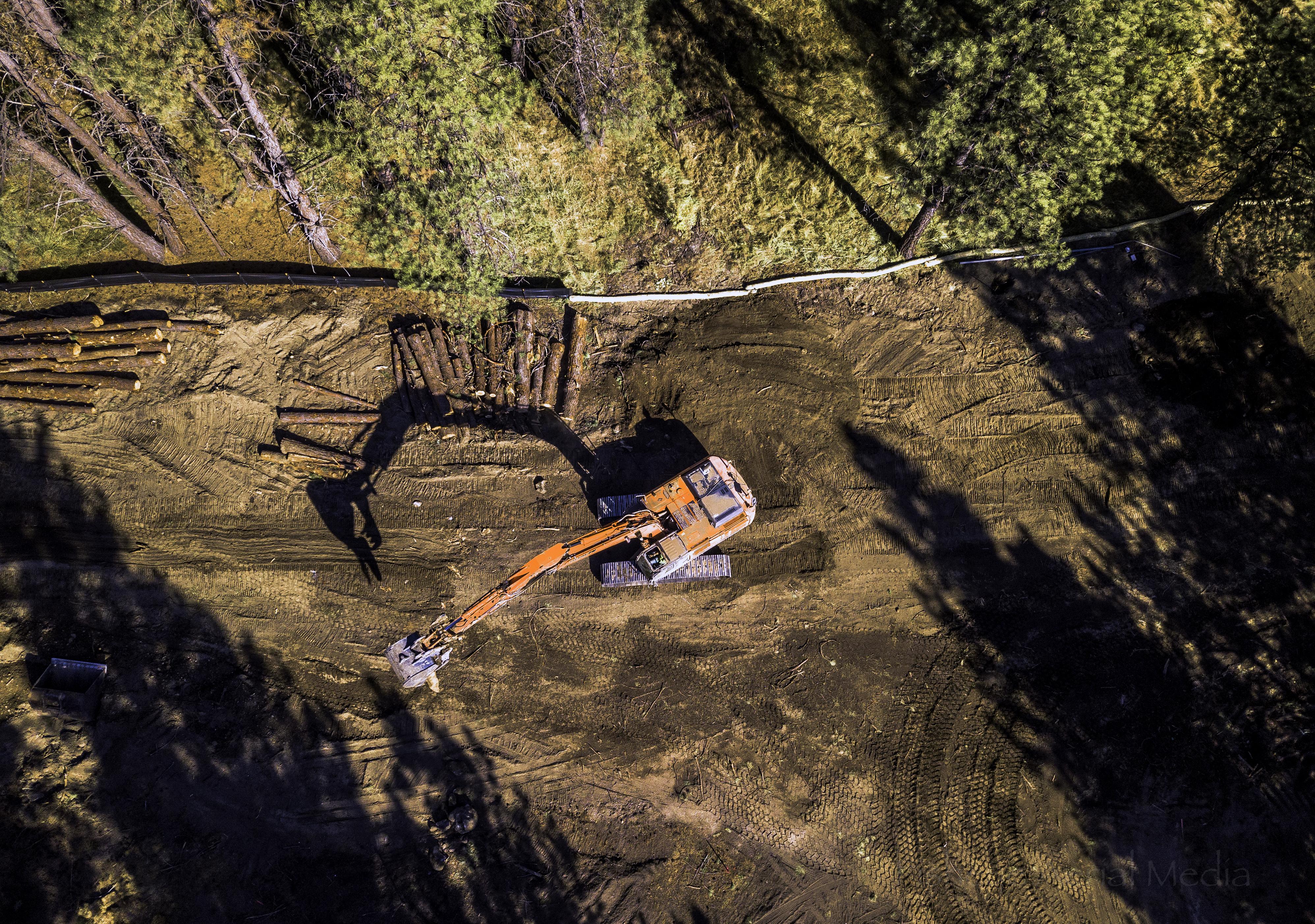 Latham excavator clearing trees