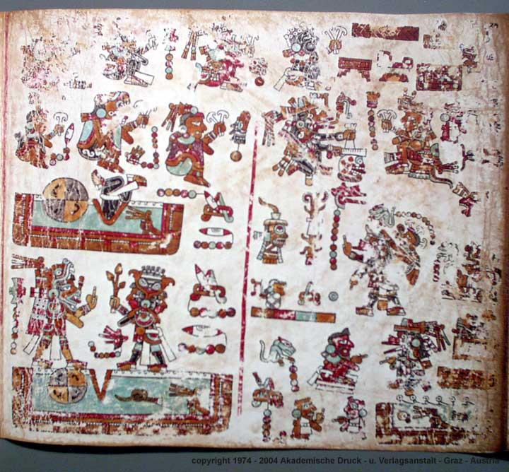 Codex Vienna Portal