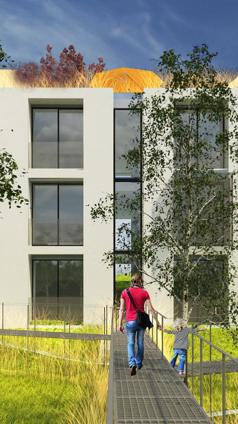 Building Apartment // Construction