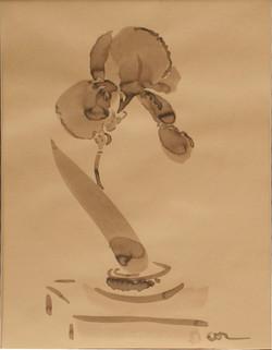 Iris in Tea Leaf Container (2001)