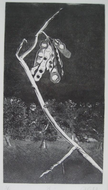 Branch (1979)