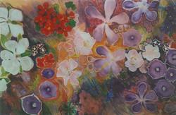 Flowers of Mt Martha (2002)