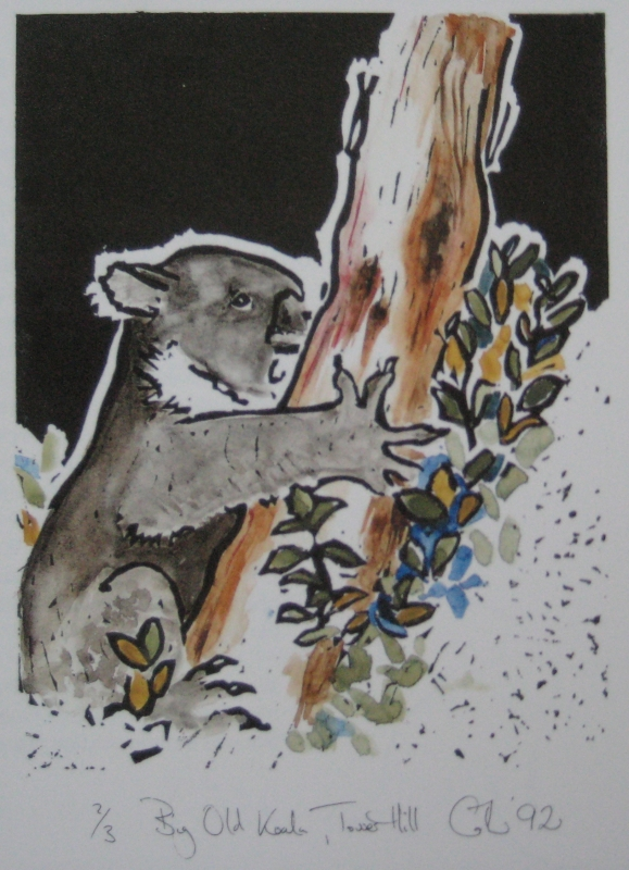 Koala,Tower Hill (1992)