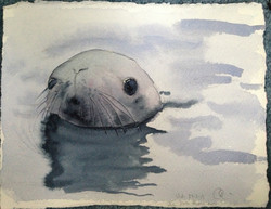 Baby Seal (2013)