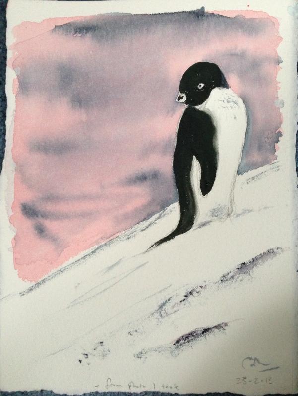 Adelie Penguin (2013)