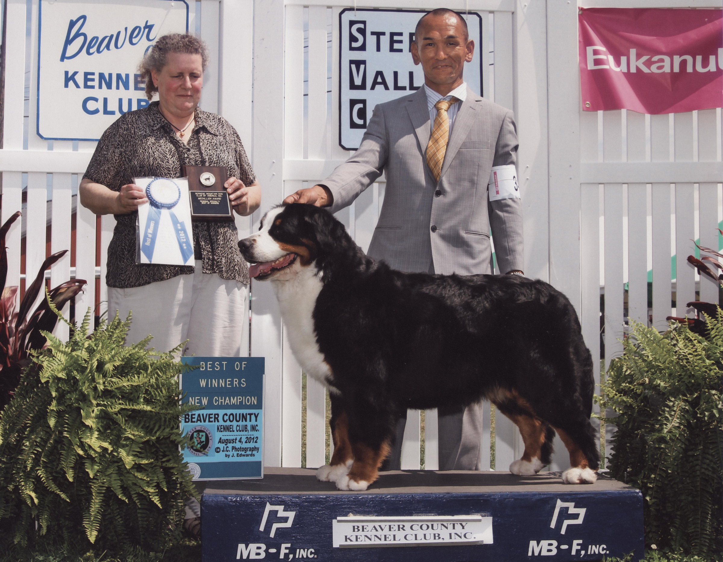 AKC CH finish in Canfield 1