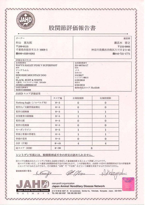 Pink_JAHD-HD-score.jpg