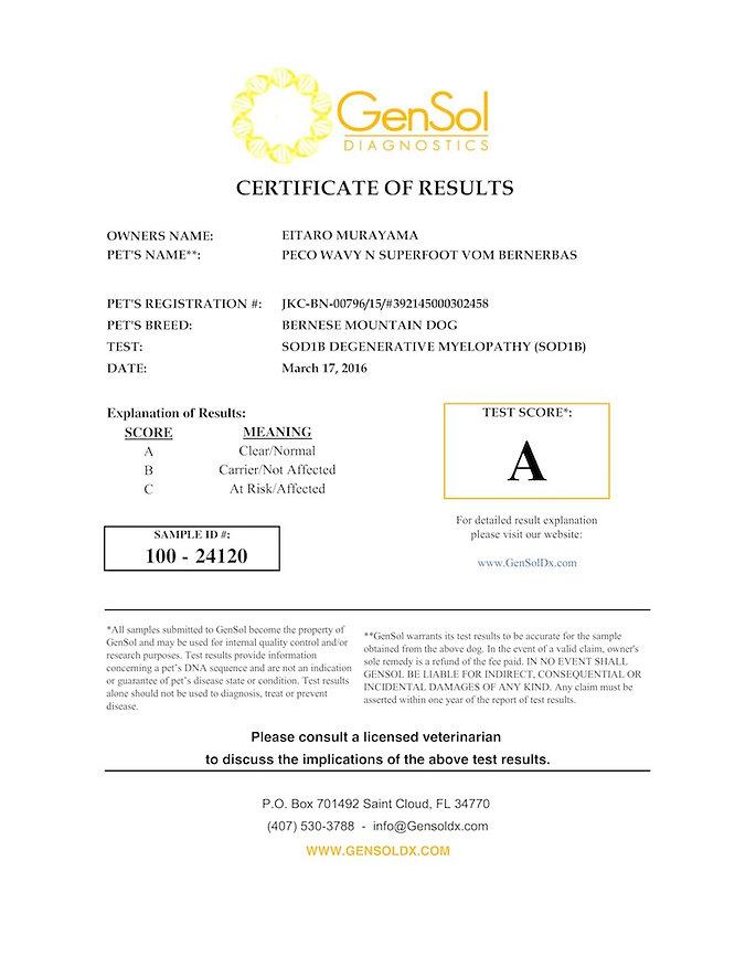 Peco SOD1B_GenSol result certificate_100