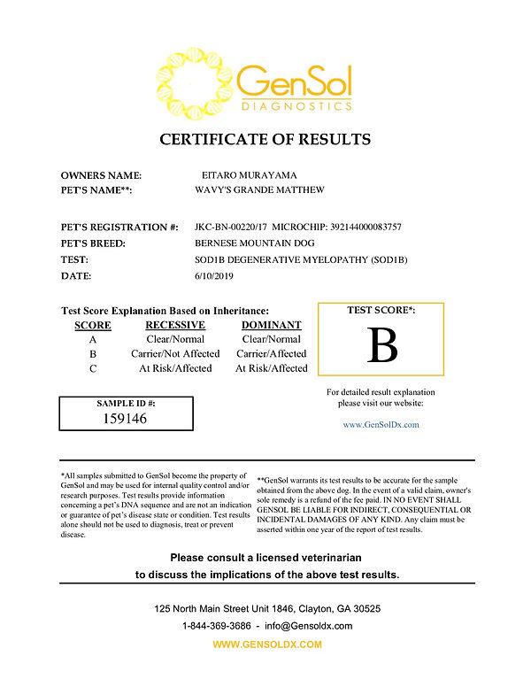Matthew-SOD1B-Gensol-159146.jpg