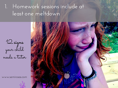 Tutoring_Homework Sessions Include at Least One Meltdown