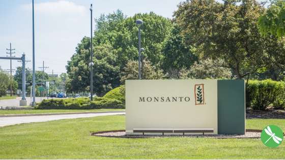 Monsanto Cancer Verdict Upheld By Judge; Analyst Estimates $800 Billion In Future Liability