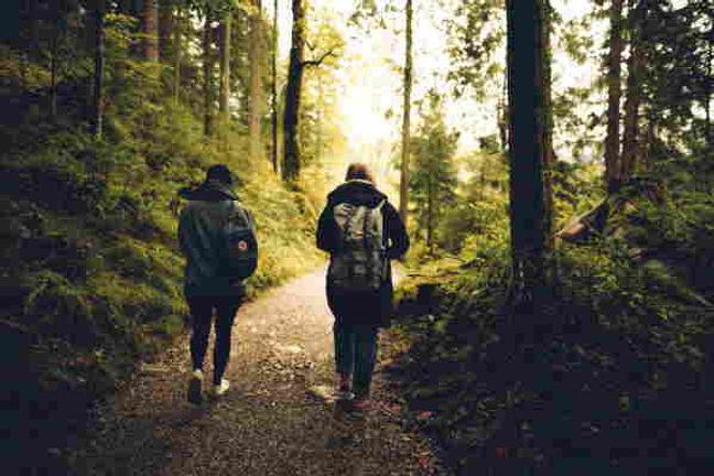 walk and talk 2.jpeg