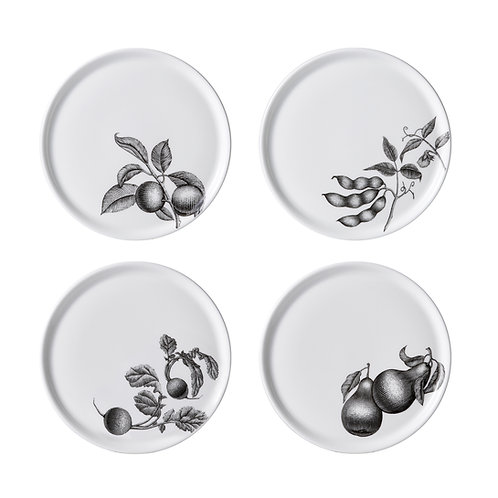 Olive Market - 6 in. Bread Plates [Set of 4]