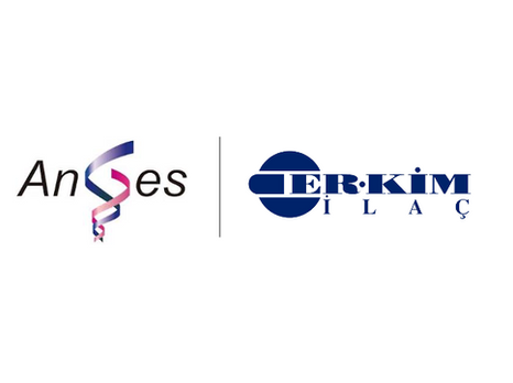 AnGes and Er-Kim enter into an agreement for the commercialization of Collategene® in Turkey