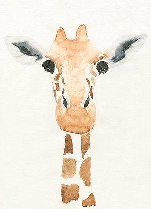 Gigi la giraffe