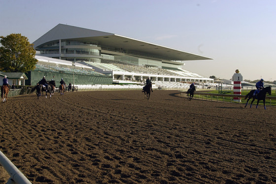 Chicago Bears Bid for Suburban Racetrack Property in Potential Move From City