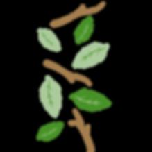 left icon (green leaf)