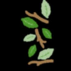 right icon (green leaf)