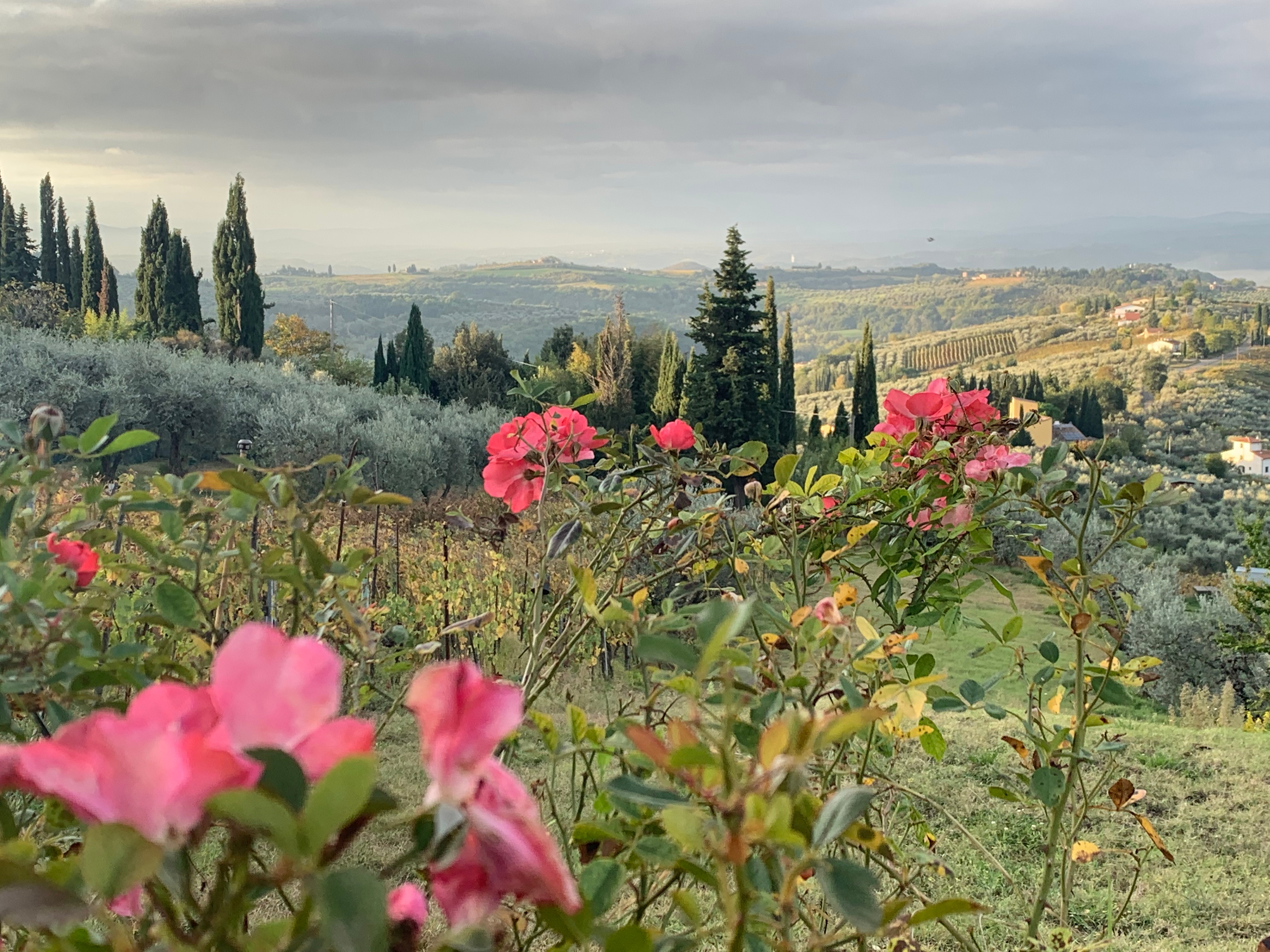 Tuscan Landscapes in Pastel