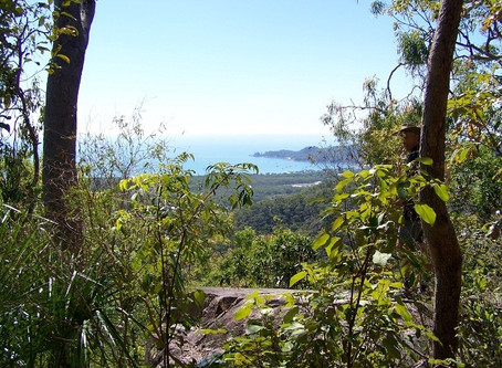 Magnetic Island on foot