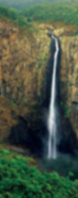 wallaman cropped.JPG