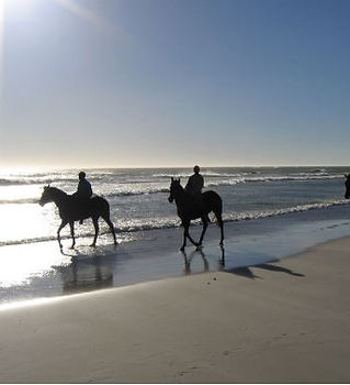 horse riding on beach.JPG