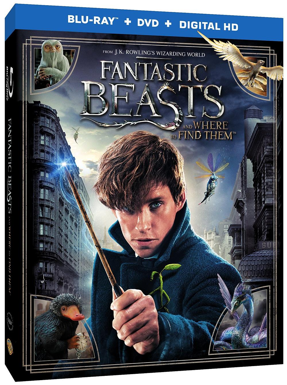 Fantastic Beasts Box Art