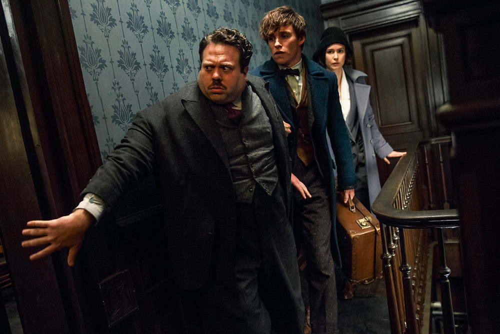 """Dan Fogler, Eddie Redmayne, and Katherine Waterston in """"Fantastic Beasts and Where to Find Them"""""""