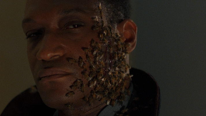 Candyman: Farewell to the Flesh: A Sequel As Bland As Its Predecessor (Blu-ray)