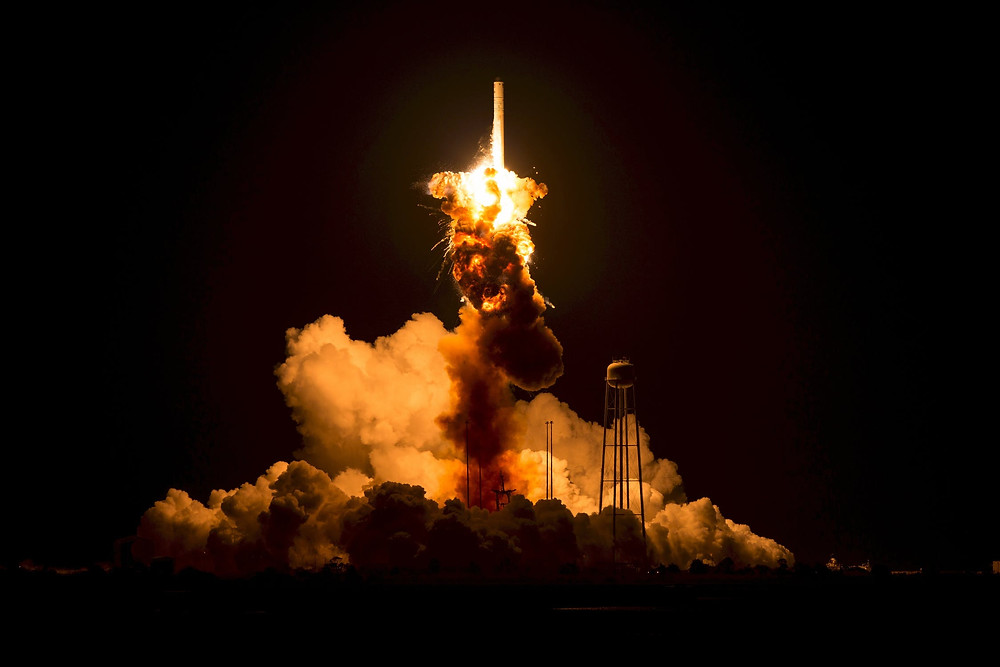 A rocket taking off to represent the soaring value of the tutoring industry.