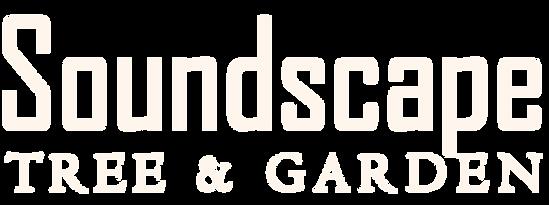 SSTG logo WHITE.png