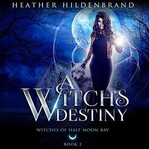 A Witch's Destiny.jpg