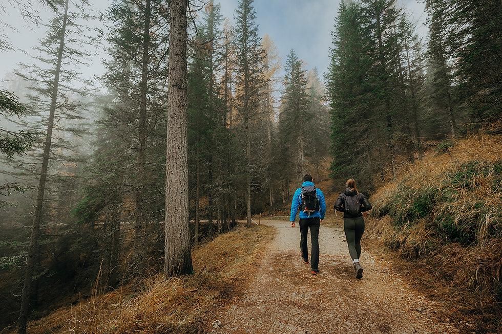 Walk-in-forest.jpg