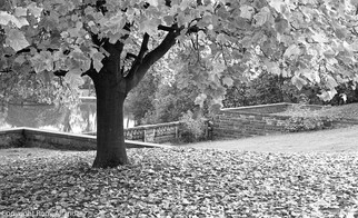 Nottingham University Park, 1987