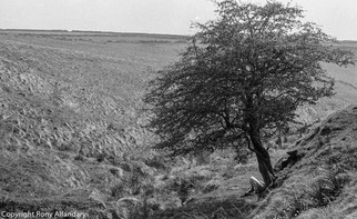 The Yorkshire Moors, 1989