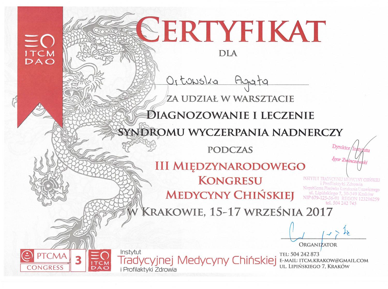 Dyplom 11