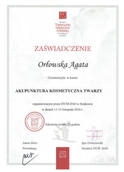 Dyplom 7
