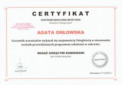 Dyplom 14