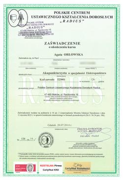 Dyplom 16