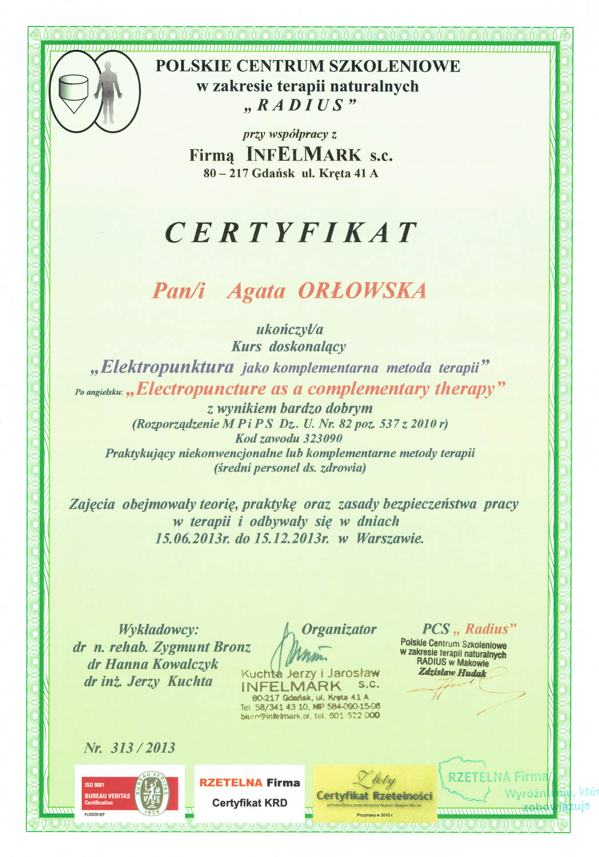 Dyplom 12