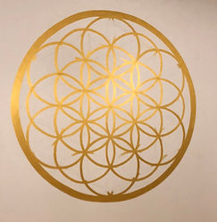 Flower of Life_edited.jpg