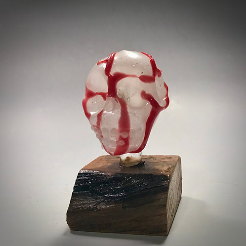 Blood Vessel Skull