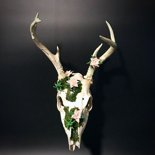 Real deer skull with glass flowers