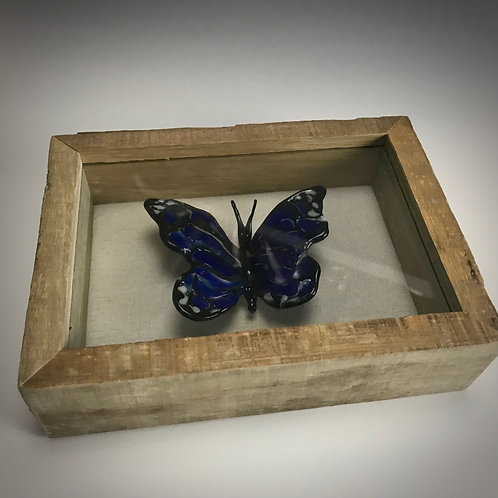 Glass Butterfly Shadow Box